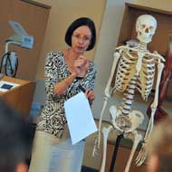 Occupational Therapy teaching with skeleton