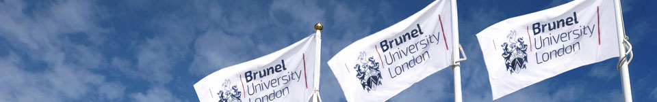 About Brunel University London