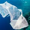 Plastics in our oceans - film's focus can raise public perception