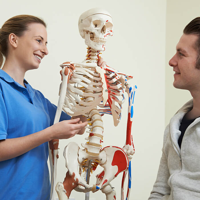 osteopath discussing injury with patient using skeleton