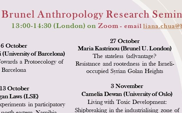 image of Brunel Anthropology Research Seminar series, Term 1 2020