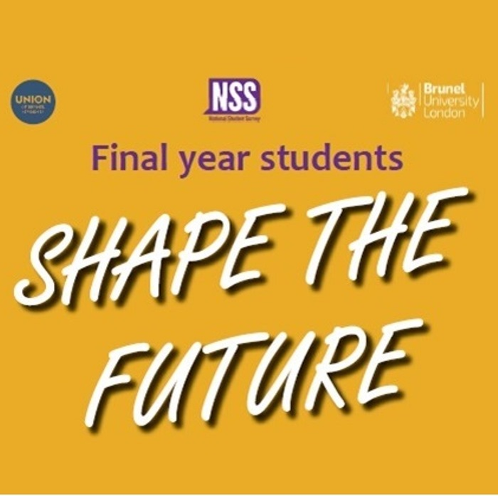 Shape the future graphic - NSS for final year students