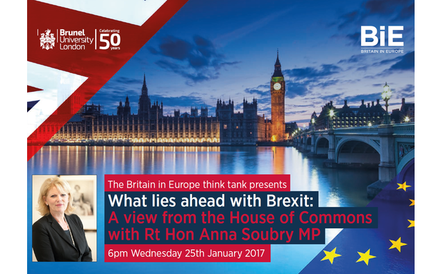 image of EVENT POSTPONED: What lies ahead with Brexit: A view from the House of Commons