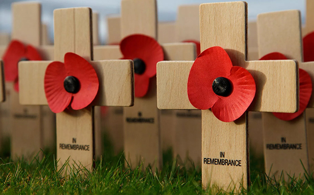 "image of Schools encouraged to explore ""moral and ethical themes"" in new guidance for Armistice Day"