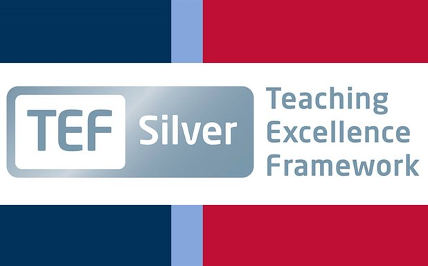 image of Silver award for teaching and learning excellence at Brunel