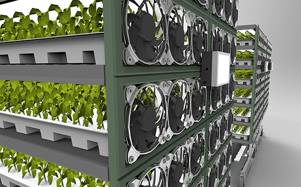 image of OLEDs could boost vertical farm efficiency by 20 per cent