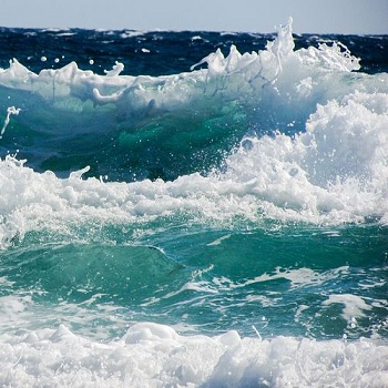 Predictive maintenance for wave energy devices