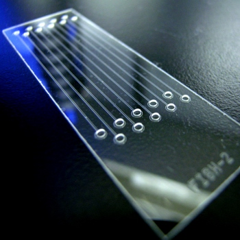 Microfluidics in Diagnosis