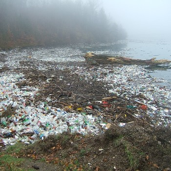 From Plastic Pollution to Solutions: Public Communication of Environmental and Health Risks