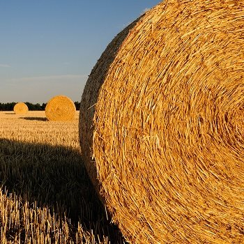Producing super-strength straw building materials
