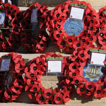 Multicultural narratives missing from remembrance